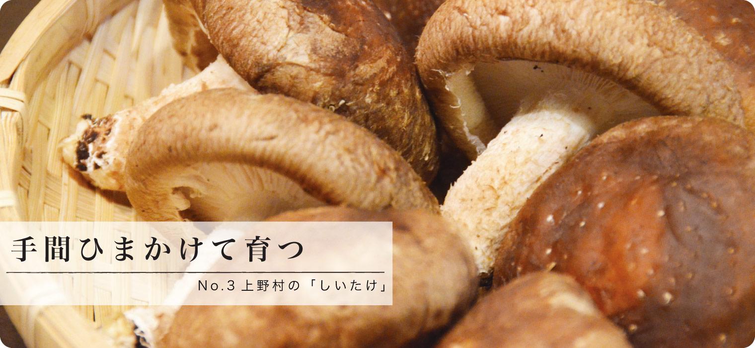 手間ひまかけて育つ 上野村の「しいたけ」