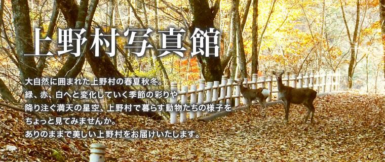 上野村写真館
