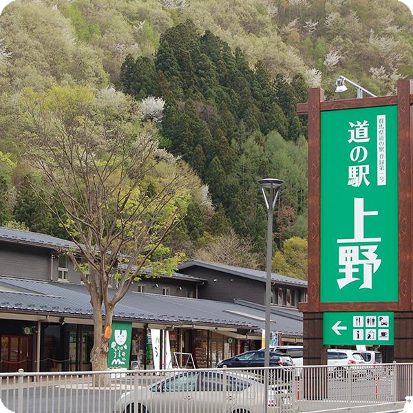 道の駅上野エリア