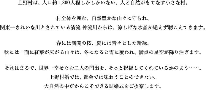 上野村婚説明文